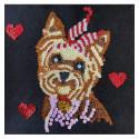 Набір для творчості з паєток 'Мій улюблений Йорик' 25*25*2 см в кольоровій коробці APT 02-01-Колібрі Art